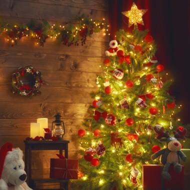 Donosimo Božić u tvoj dom!